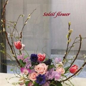 芽吹く春の花たち